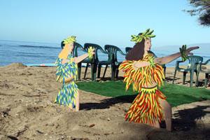 Surfing Safari – Hawaiian Style